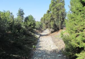 Santiago Creek Greenway