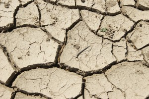 Extreme weather and drought can impact availability of water.