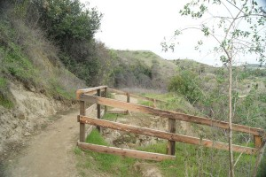 Fencing meant to keep people away from a landslide impacting a trail.