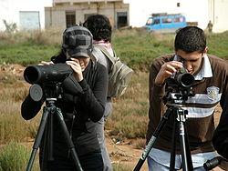 Birders with cameras.