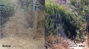 A before and after of a closed trail.