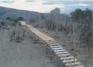 Do not build bike ramps in natural areas.