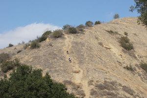 Avoid using wildlife trails.