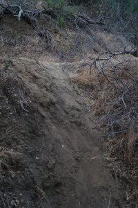 Cutting switchbacks erodes the trail and damages the resources.